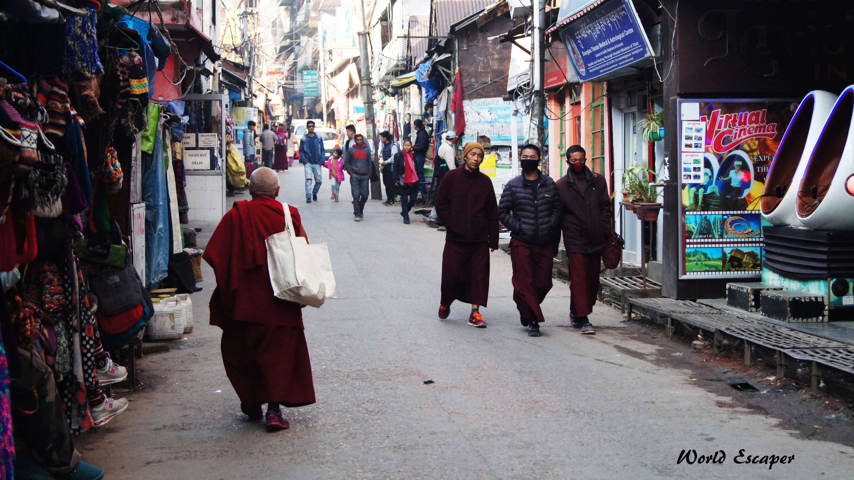 印度|德蘭薩拉 Dharamshala|走一趟西藏之外的流亡政府